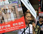 反对玉林狗肉节的动物保护者们,呼吁不要吃猫狗。(STR/AFP/Getty Images)