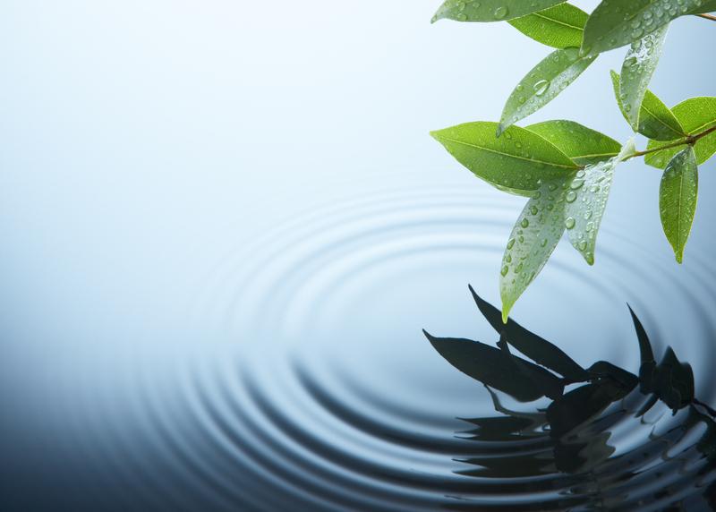皇甫容:從水結晶實驗看相由心生