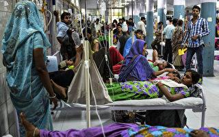 组图:印度爆发严重登革热疫情 病例近二千