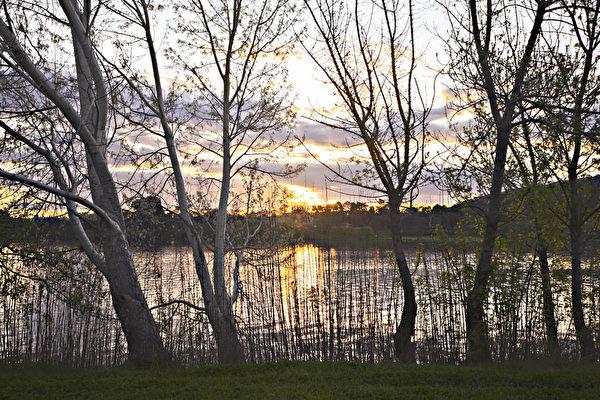 春风悄悄吹过岸边坡路,命中事早底定。(伊罗逊/大纪元)