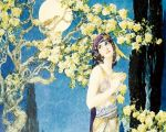 费兹杰罗(Fitzgerald)1930年《鲁拜集》英译本插图,匈牙利画家威利.波加尼(Willy Pogany)作。(本文作者提供)