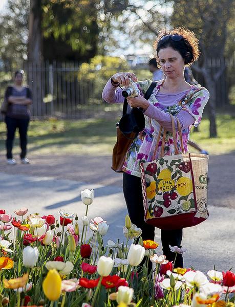 南半球最大的花展在澳大利亚堪培拉举行,进入了第28个年头。人们拿手机拍照最容易。(伊罗逊/大纪元)