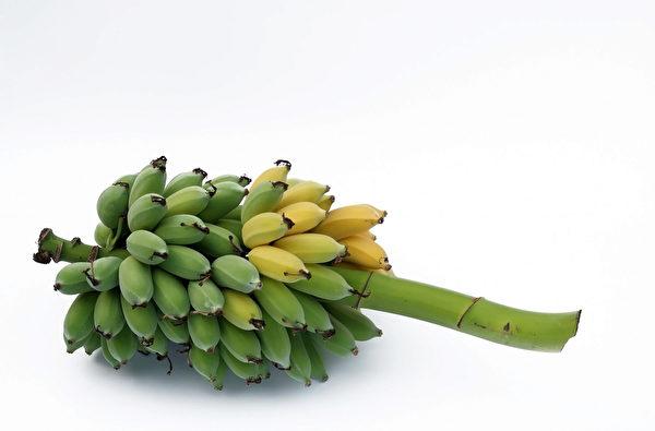 未熟香蕉。(Fotolia)