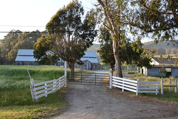 图:牧场入口处。(David Cline提供)