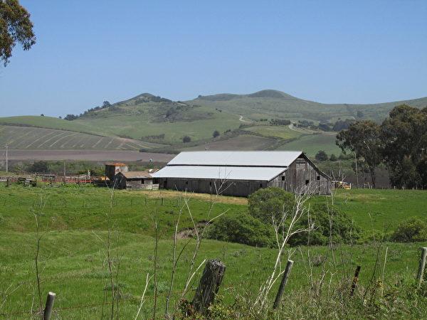 图:牧场的谷仓。(David Cline提供)