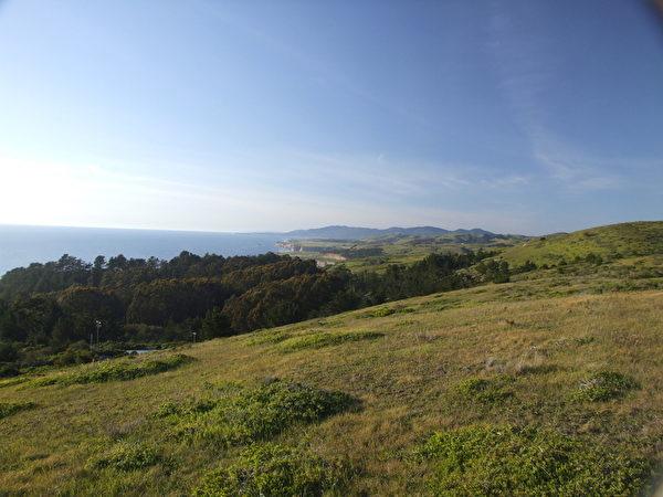 图:紧邻太平洋的湾区牧场。(David Cline提供)