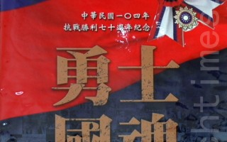 臺退役空軍:國民政府主導抗日戰爭