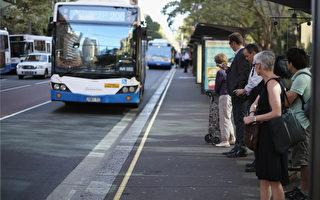 悉尼市中心轻轨开工 新公交线路让人困惑