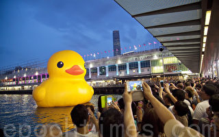 大黄鸭下周末访纽约