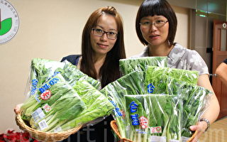 七年級女孩務農  有機蔬菜熱銷全台