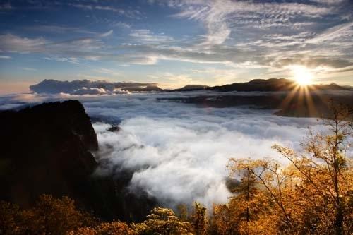 阿里山赏枫,观云海、日出。(饶瑞斌/台湾观光局提供)