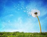 """我们""""想要""""的东西总是太多;而真正""""需要""""的有限。(fotolia)"""