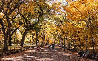 纽约中央公园秋色。(戴兵/大纪元)