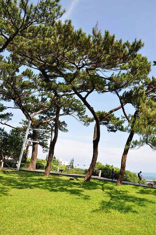 松园别馆远览,远处为太平洋。 (图片提供:tony)