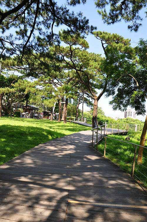 松园别馆木栈道。 (图片提供:tony)