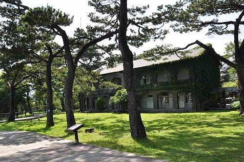 松树林是松园别馆最大的特色。(图片提供:tony)