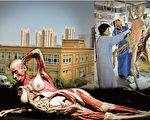 世界巡展中被塑化的母嬰屍體,引起外界對屍源的強烈質疑。傳統依然很強的中國人,不可能讓親人的屍身被如此處置、展覽。(圖片來源:大紀元合成)