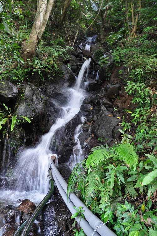 步道终点的小瀑布。 (图片提供:tony)