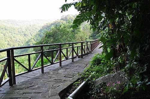 爬上140阶,来到山腰,看见百年水圳。 (图片提供:tony)