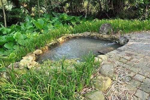 池衣池。 (图片提供:tony)