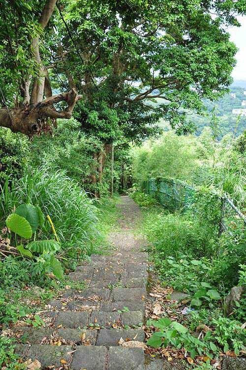 """平菁步道,旧称""""平明步道"""",是一条百年古道(大岭路)。 (图片提供:tony)"""
