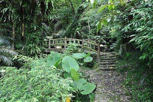 小水泥桥越过溪涧。  (图片提供:tony)