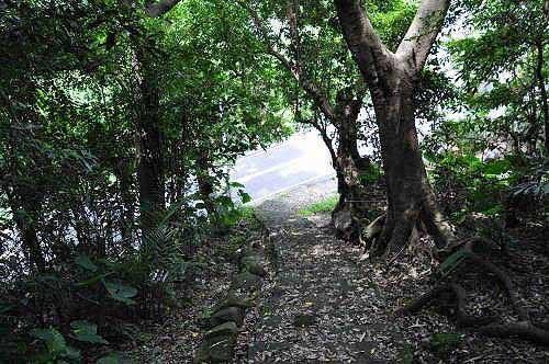平菁步道(图片提供:tony)