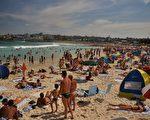 本週六,悉尼邦岱(Bondi)的最高溫度預計為29度。(PETER PARKS/AFP/Getty Images)