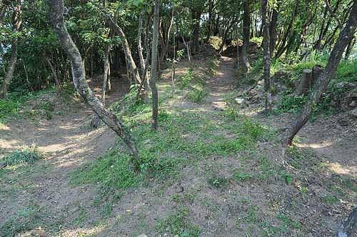 炮台附近的堑壕遗迹。(图片提供:tony)