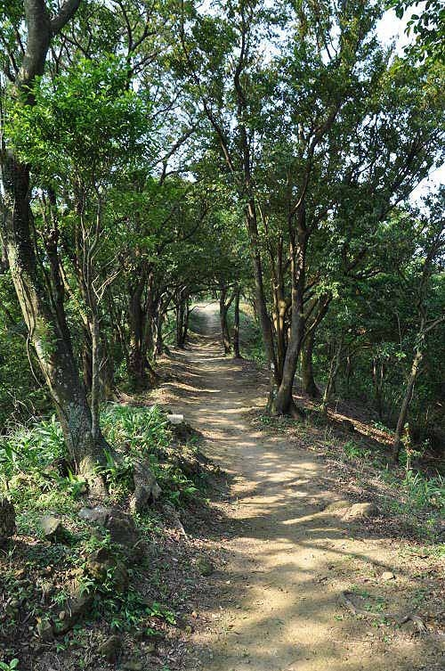 抵达主棱,山路变得宽阔平缓。(图片提供:tony)