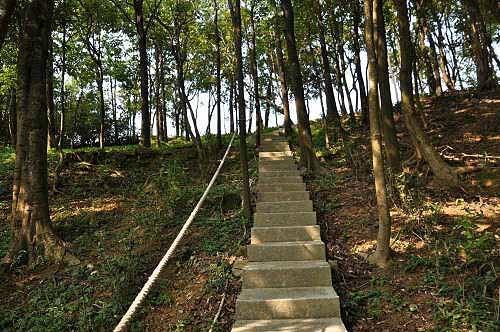 水泥石阶路上行,穿越一小段树林。 (图片提供:tony)