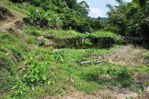 接连跨越两条小溪涧,来到岸边的农圃地。 (图片提供:tony)