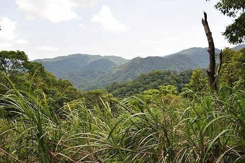 接近山麓,难得视野有展望。 (图片提供:tony)