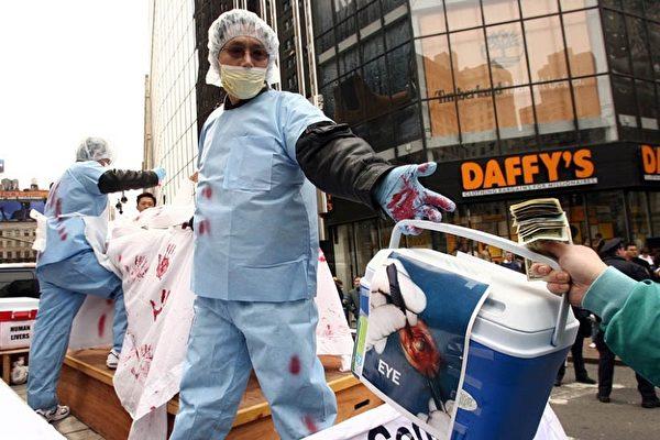由法轮功学员在纽约曼哈顿中城举行盛大游行,图为揭露中共活摘贩卖法轮功学员器官的罪行 。(大纪元)