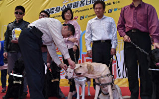 為肯定導盲犬貢獻與努力,台北市長柯文哲(前左)28日親頒「榮譽市犬」獎章給7隻退役導盲犬,並說近來 恐攻讓他覺得「對別人好,其實就是對自己好」,製造仇恨對自己終究非好事。(台北市政府提供)