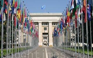 联合国禁止酷刑委员会要求调查中共强摘器官