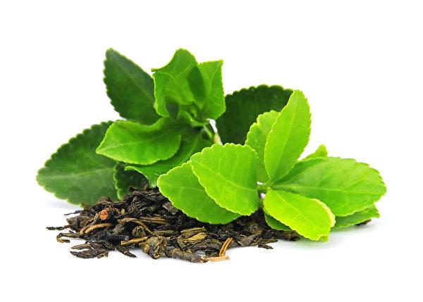 五位茶农种的茶叶清香味醇并能治病。(Fotolia)