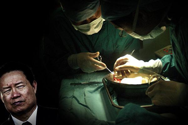 中共前政治局常委、政法委书记周永康涉及大陆器官移植黑幕,是器官移植利益链的幕后黑手。(大纪元合成图)