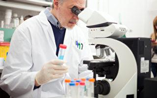 特发性肺纤维化是如何发病的?