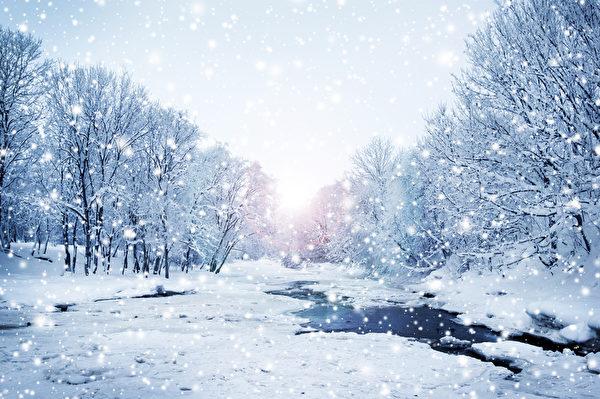 冬季自然景观。雪域森林(fotolia)