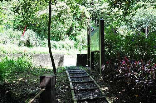 返抵磐石岭登山步道入口。 (图片提供:tony)