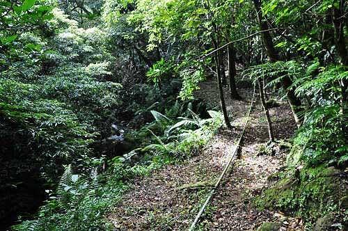 抵达溪谷,山路转为平缓,地面有引水的水管。左为三坑溪上游。 (图片提供:tony)