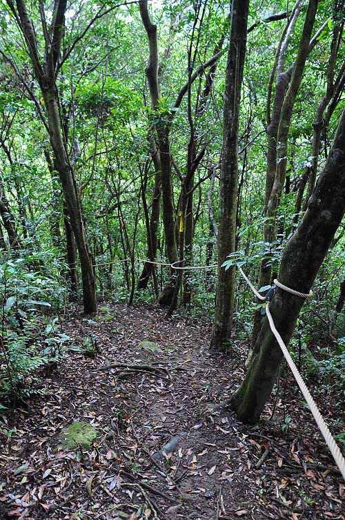 棱线路,山路陡下,有绳索辅助攀降。 (图片提供:tony)