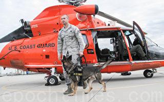 旧金山湾区警犬与直升机集训 备战明年超级碗