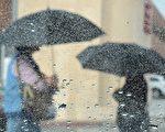厄爾尼諾有極大可能在今冬給加州帶來幾場強烈暴風雨。圖為2015年9月15日在洛杉磯,婦女們因持續降雨而撐起雨傘。(Frederic J. Brown/AFP/Getty Images)