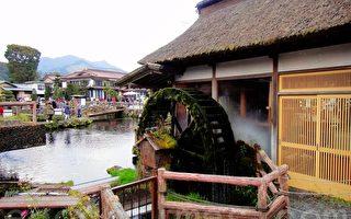走馬觀花遊日本 (之五)