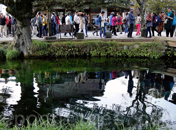 忍野八海的池子(藍海/大紀元)