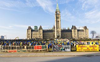 加拿大新总理会晤习近平 关注法轮功人权