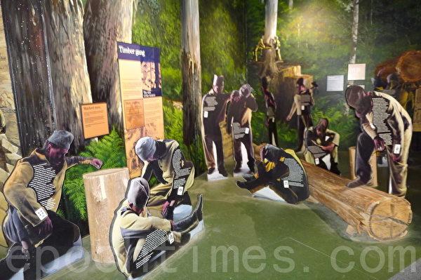 在亚瑟港历史遗址服务中心展览厅有一副反映犯人伐木的画面(华苜/大纪元)