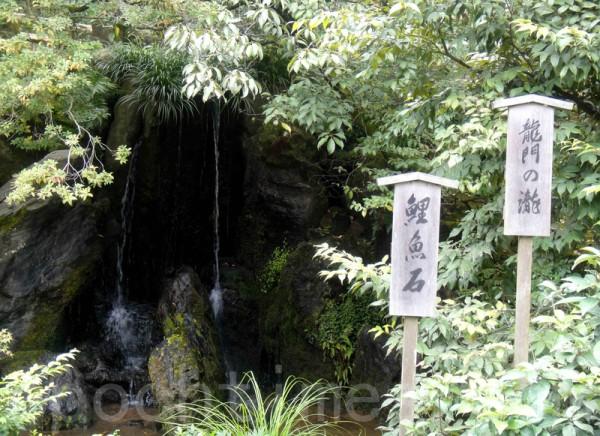 金閣寺鯉魚石(藍海/大紀元)